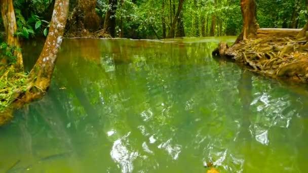 Světlé barevné přírodní bazén v exotických deštný prales. Tropické džungle na šířku