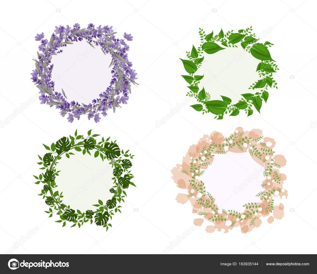 cuadros floral de lavanda verde — Archivo Imágenes Vectoriales ...