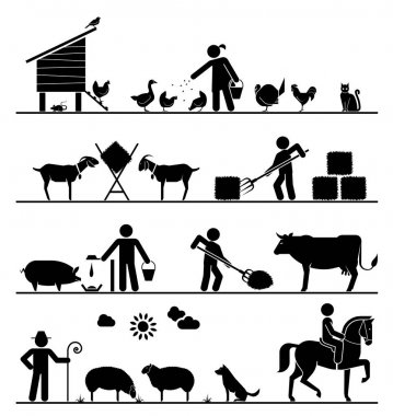 Feeding chickens and poultry, feeding goats with hay, feeding pigs and cattle, grazing sheep, riding horse. Agriculture icons. stock vector