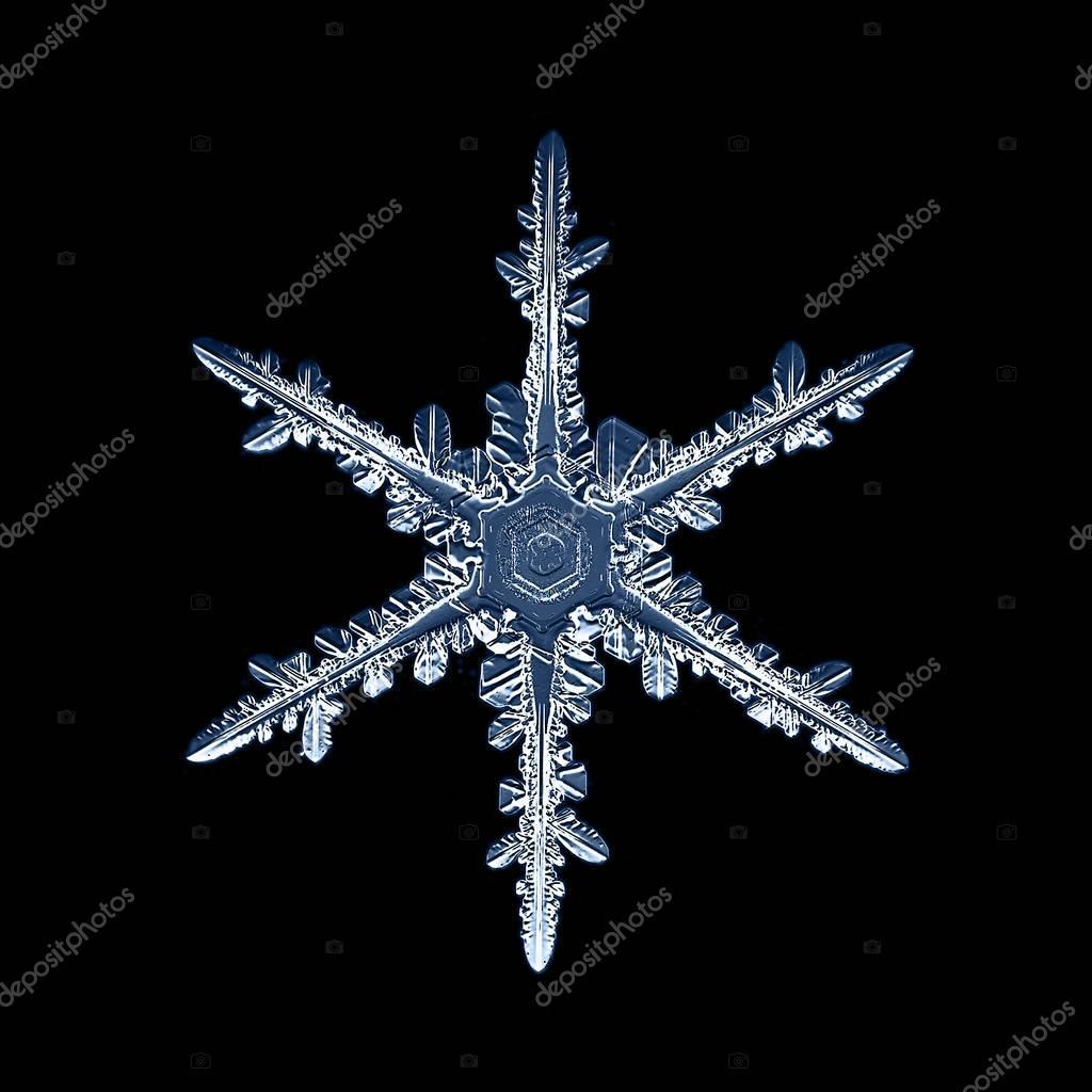beautiful snowflake macro shot