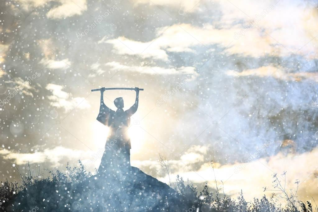 silhouette of warrior holding sword