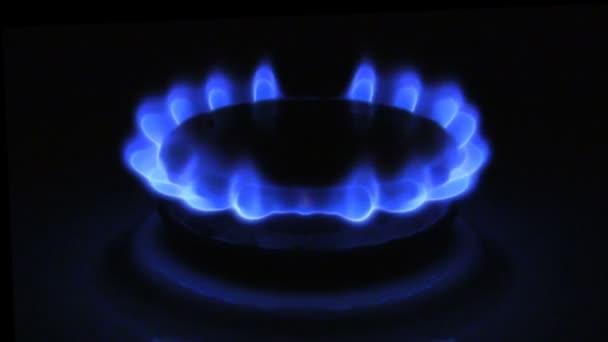 Vzhled modrého plamene plynu. Plynový sporák na černém pozadí
