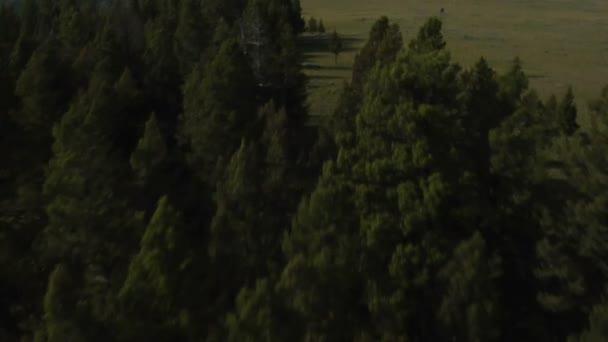 Plochá zelená krajina