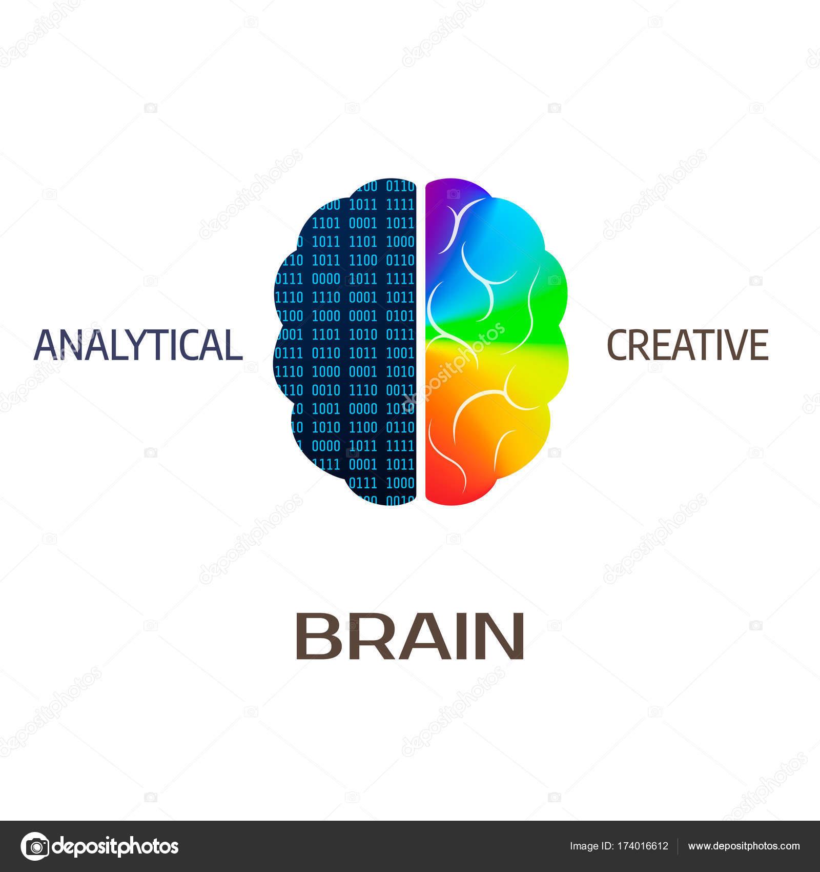 Gehirn-Symbol. Linke Gehirnhälfte Teil - analytische. Rechte ...