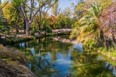 Pond in Parque Infante Dom Pedro park in Aveiro, Portugal