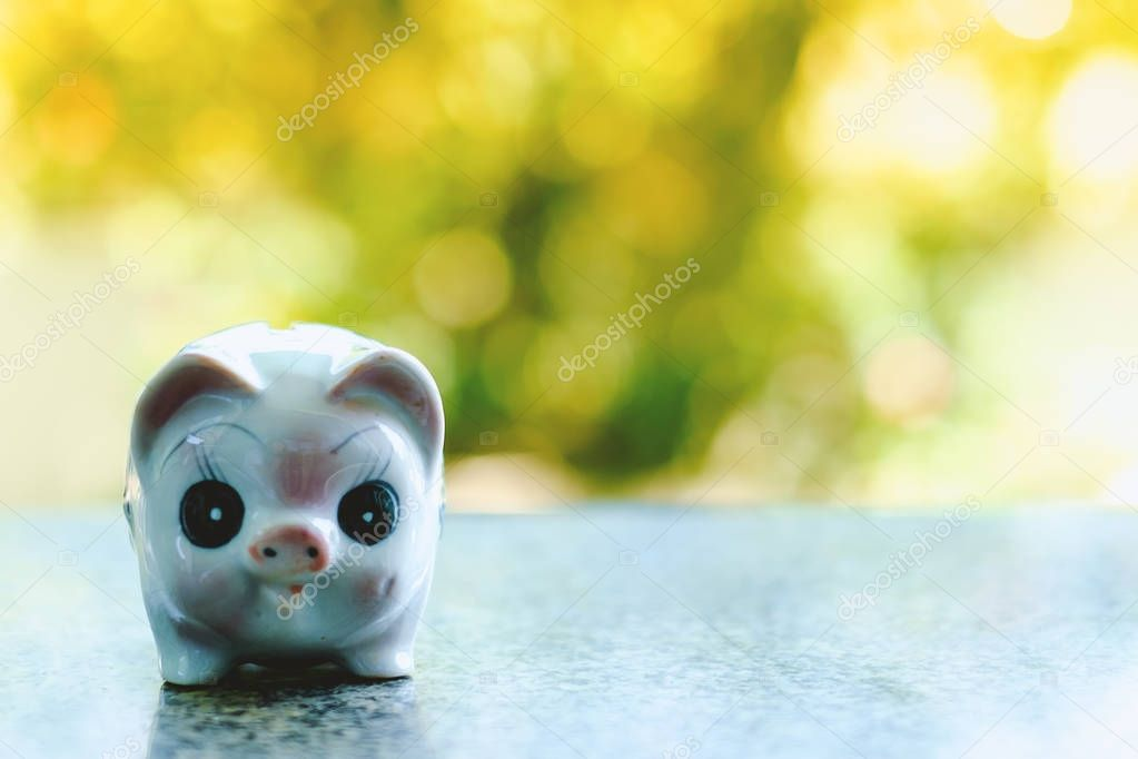 Piggy bank on blurred natural background with vintage retro color tone