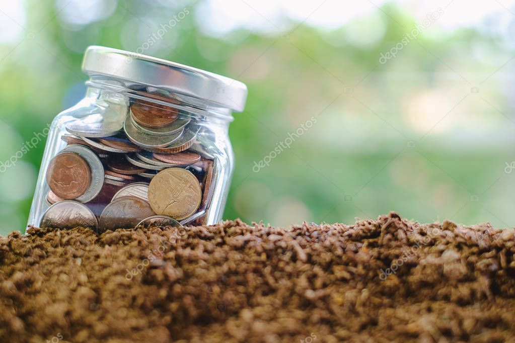 Coin in the glass jar growing from soil against blurred natural