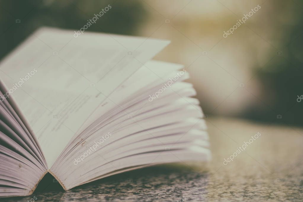 Selective focus of opened book on blurred natural green backgrou