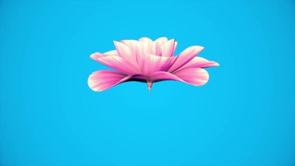 4 фото с цветком