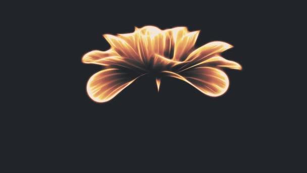 Eröffnung Lange Blüte Orange Neon Blume Zeitraffer 3d Animation