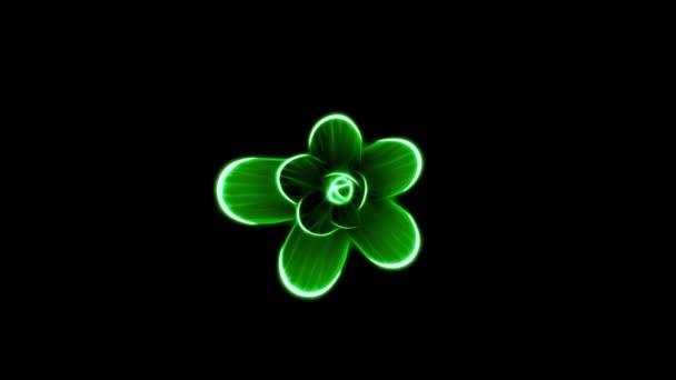 Eröffnung Lange Blühende Grüne Blume Zeitraffer 3d Animation