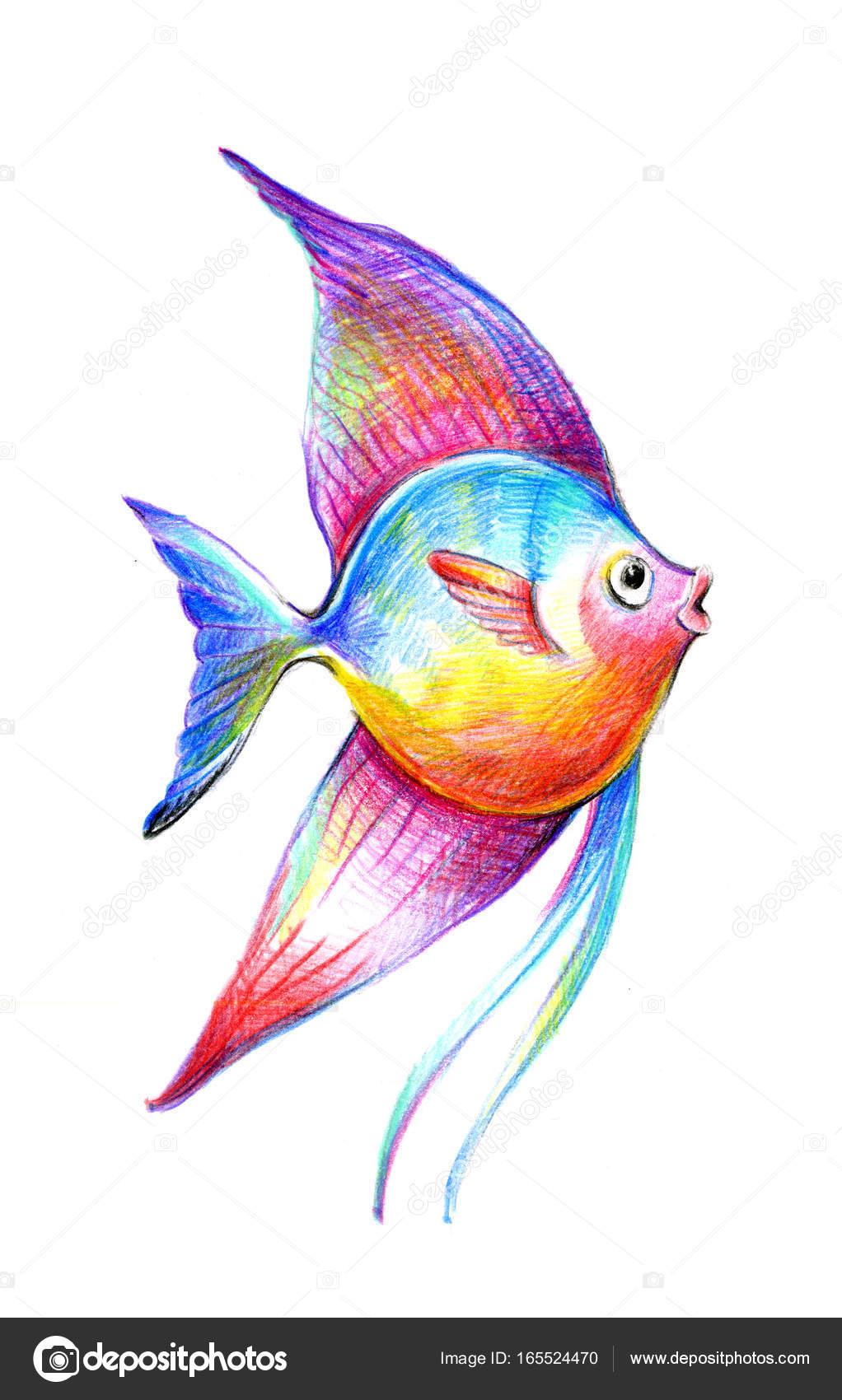 Dibujos Pez De Colores Dibujo Ilustración De Vector De Hermosos