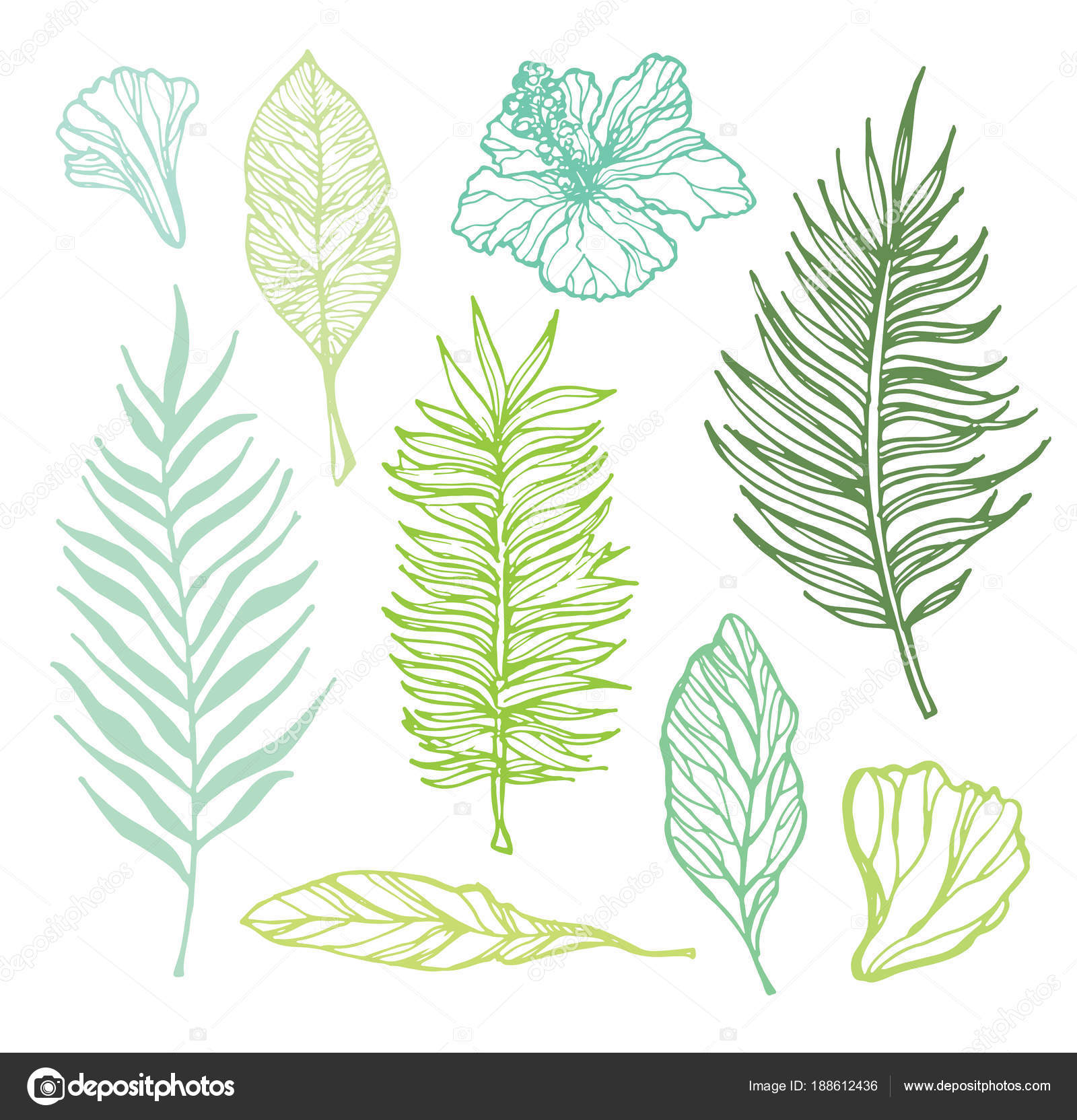 Hand Drawn Doodle Tropical Palm Leaves Stock Vector C Jane55 188612436 Hand drawn doodle pattern palm tree leaves tropical leaves. https depositphotos com 188612436 stock illustration hand drawn doodle tropical palm html