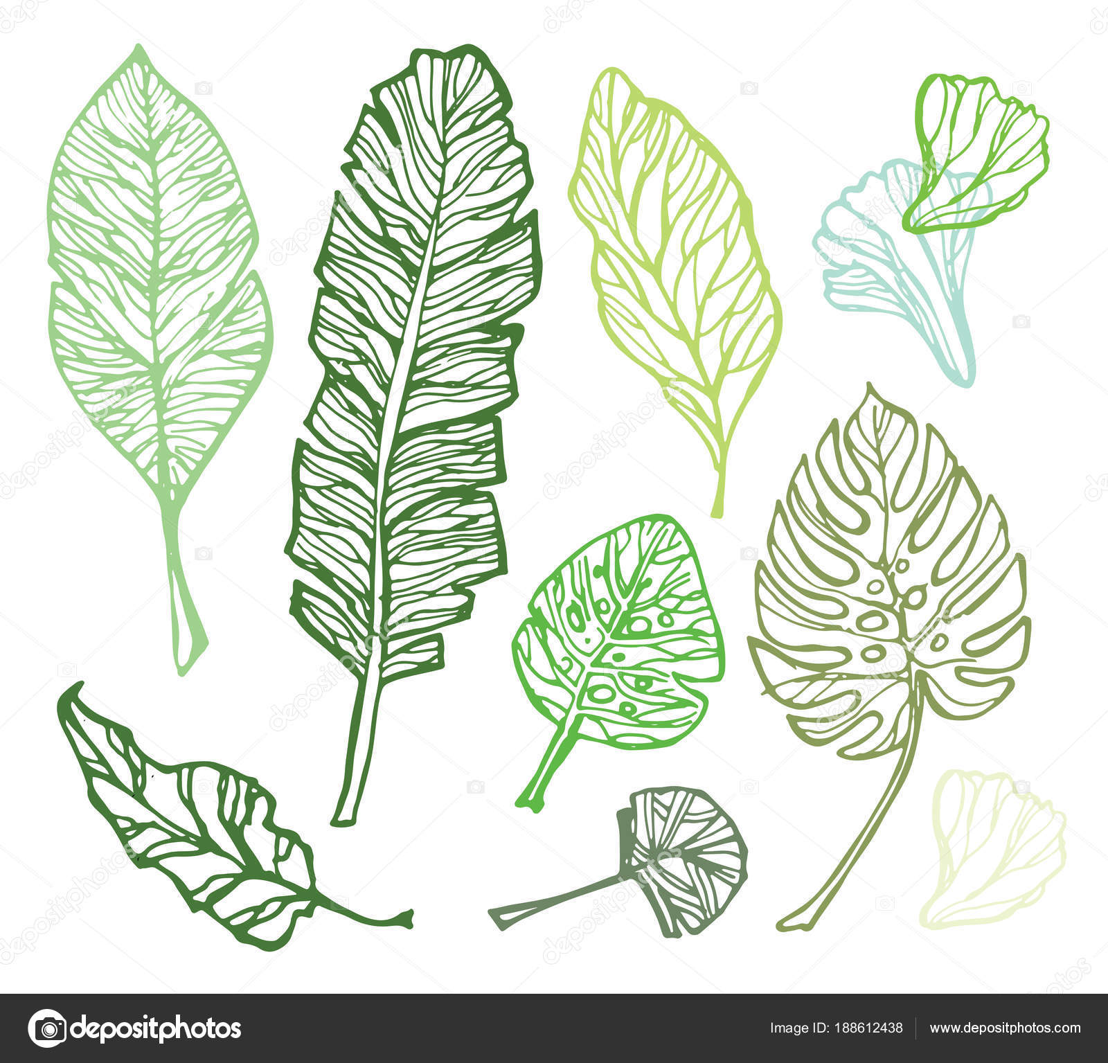Hand Drawn Doodle Tropical Palm Leaves Stock Vector C Jane55 188612438 Find over 100+ of the best free tropical leaves images. https depositphotos com 188612438 stock illustration hand drawn doodle tropical palm html