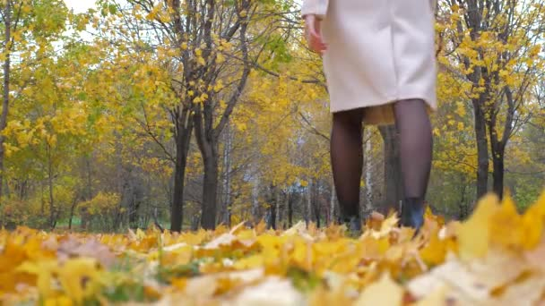 Lady In Beige Coat And Orange Scarf Walking On Autumn Carpet Of Yellow Leaves 4k