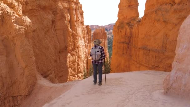 Hiker Woman Begins Goes Down The Route Near The Rock Wall Of The Bryce Canyon