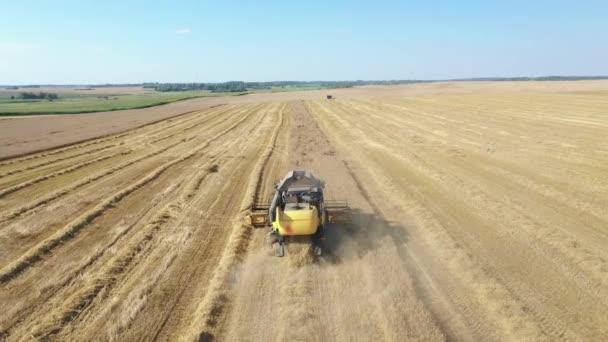 Szüretelő összegyűjti érett árpa gabona Mezőgazdasági területen Aerial View