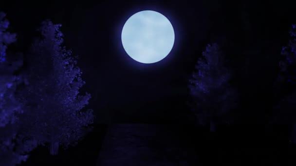 filmischer Blick in den nächtlichen Wald. Blautöne. durch Bäume auf der Sandstraße zum Mond zu bewegen. Hintergrundanimation für Titel oder Logo