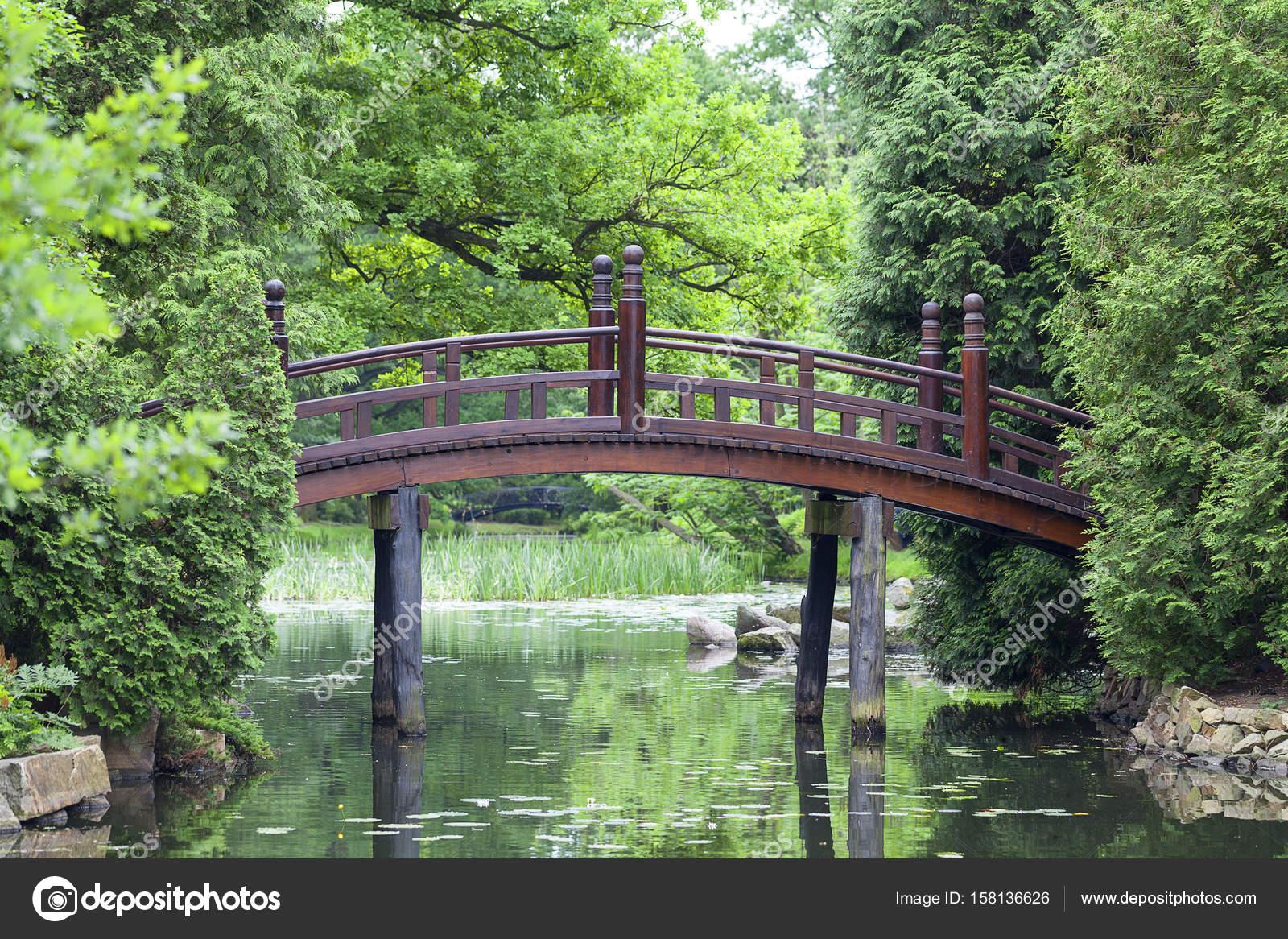 Jardin japonais plantes exotiques wroclaw pologne photographie mychadre77 158136626 - Plantes jardin japonais ...