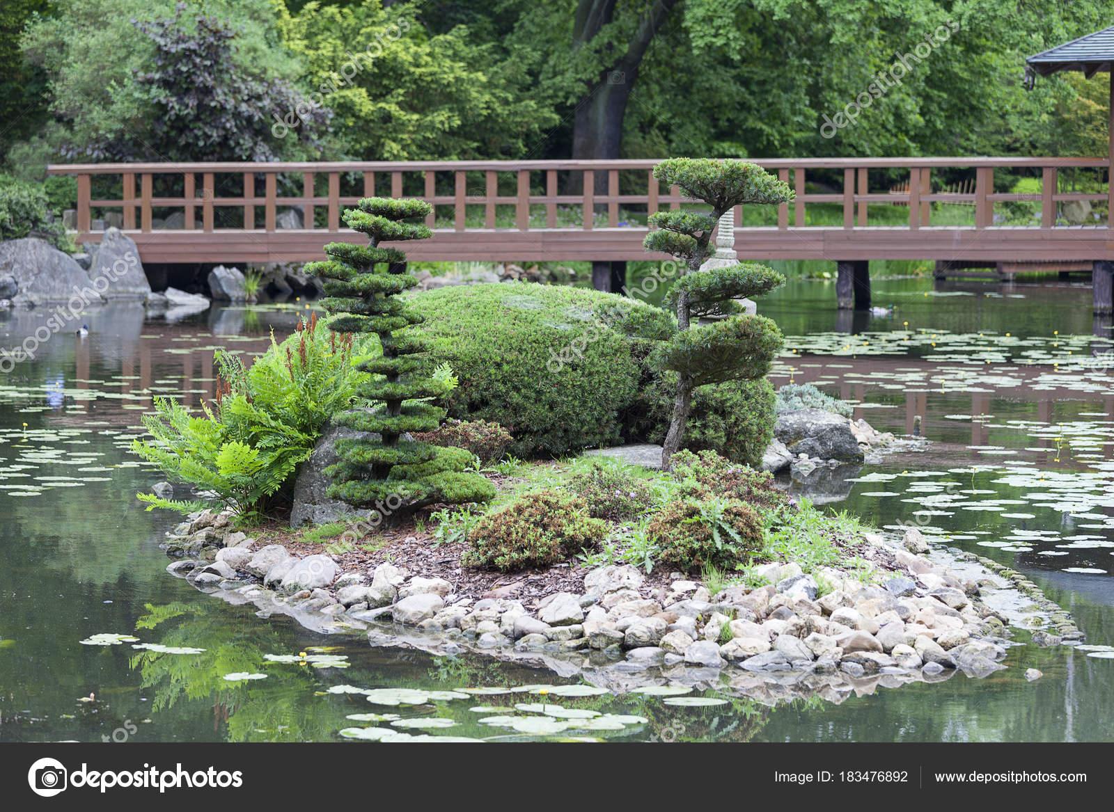 Japanischer Garten Exotischen Pflanzen Wroclaw Polen Stockfoto