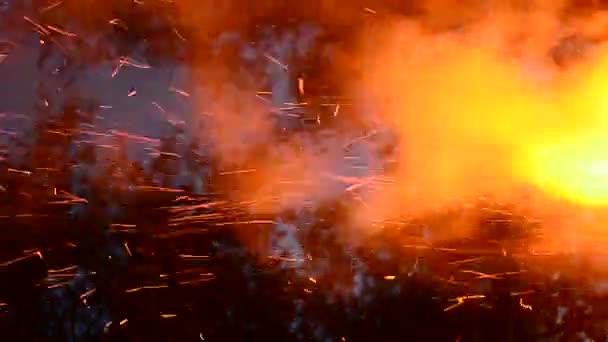 Scintille del fuoco crepe nella griglia focolare. Aumento cenere ardente da grande fuoco nel cielo notturno. Notti destate, presenza di natura. Food porn e priorità bassa alla moda