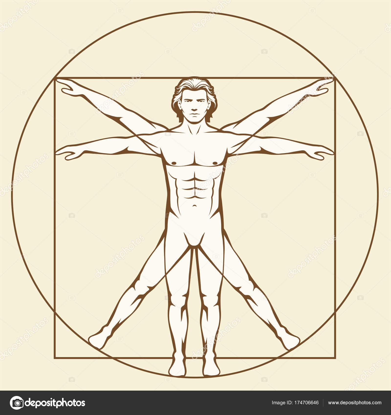 Leonardo Da Vinci Vetruvian Man — Archivo Imágenes Vectoriales ...