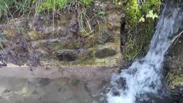 Resultado de imagen de El agua fluye del manantial de la montaña