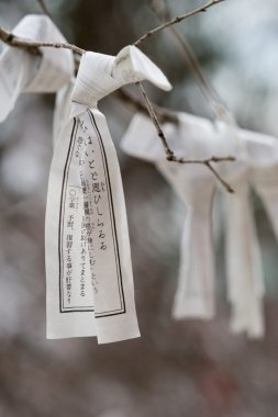 Individual prayer paper knotted around a tree branch.