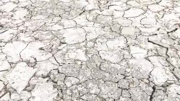 Dry and cracked land