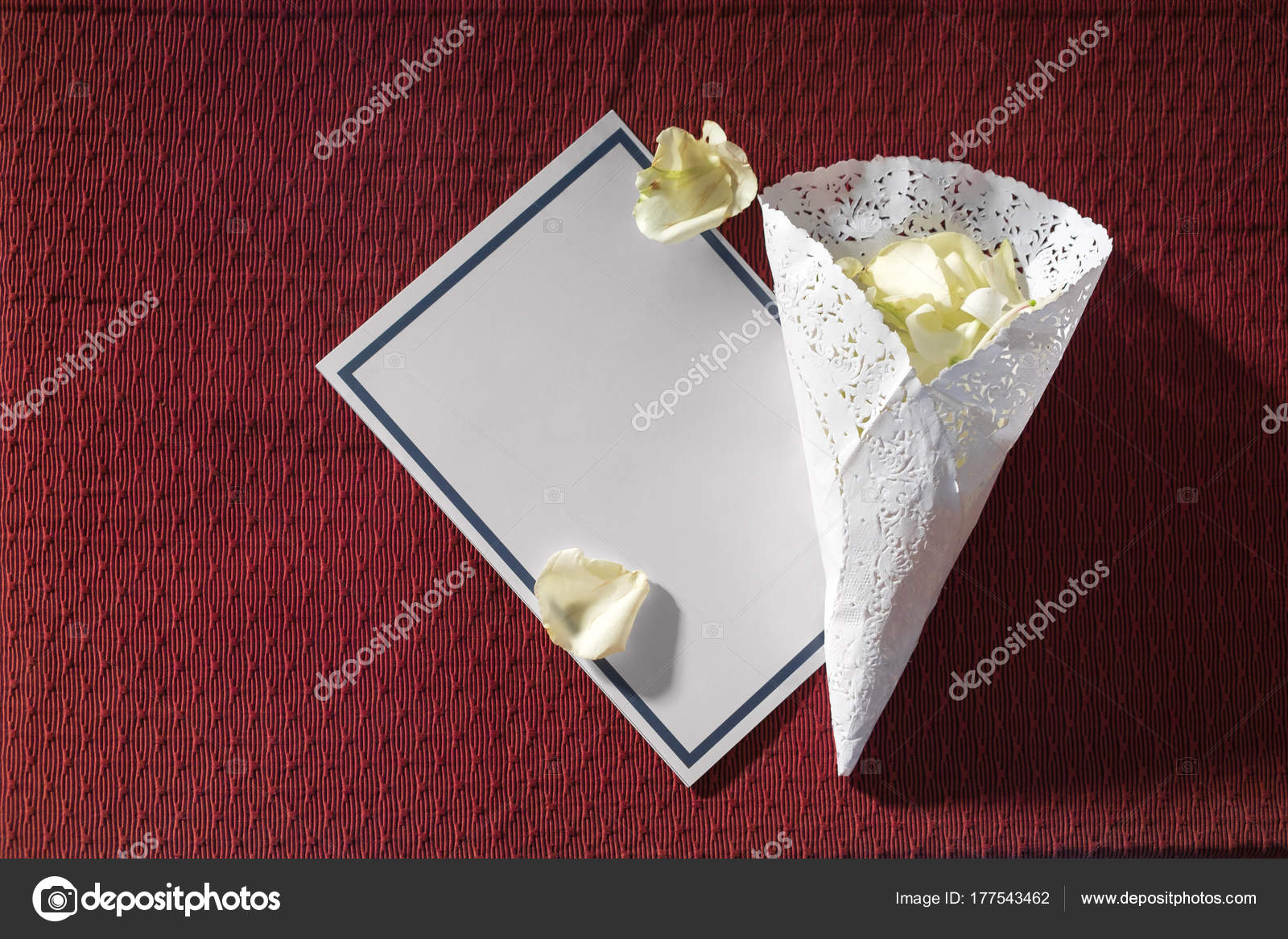 Blank Template Wedding Invitation Card with White Rose pedals on ...