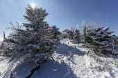 Paesaggio di inverno, coperto da neve bianca