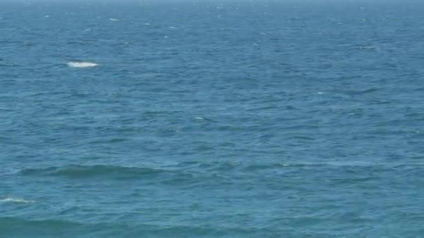 modrý mořský proud