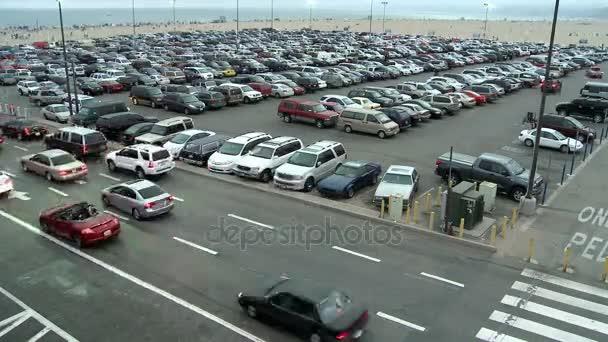 heavy traffic in parking lot