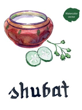 Kazakh cuisine, bowl of shubat or fermented camel milk