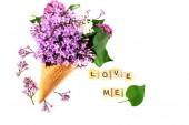 Složení květiny. Lila v oplatkovém kornoutku. Byt leží, pohled, kopie prostor shora. Koncepce návrhu, lásky a něhy