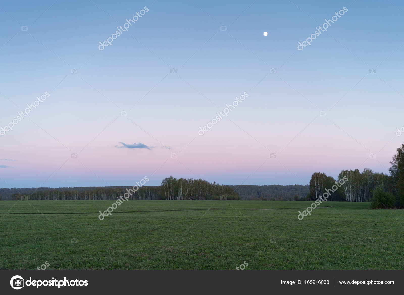Green Field On A Background Of Pink Purple Sunset Stock Photo C Penderev 165916038