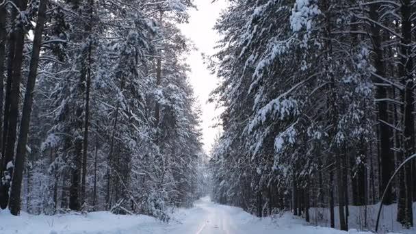 cesta přes zasněžené zimní les
