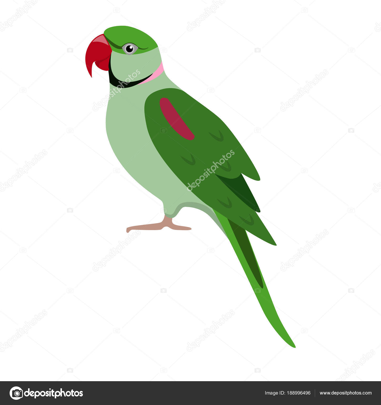 Alexandrine parrot icon in flat style — Stock Vector