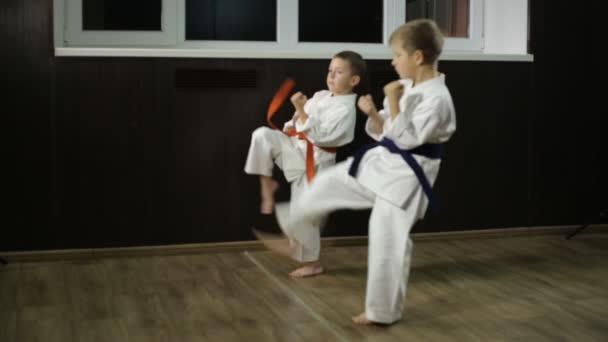 A gyerekek karatéznak, lábakat edzenek.