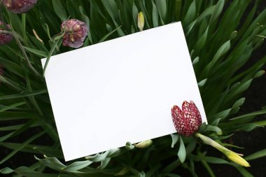 Background with flowers. Flowers composition.  Mockup card with plants. Mockup with postcard and flowers on dark background.
