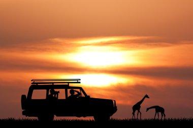 jeep safari at sunset