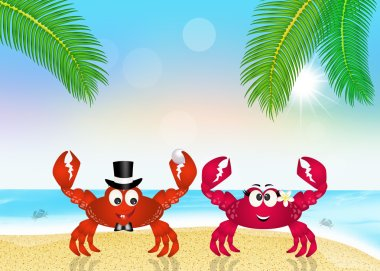 Marriage of crabs