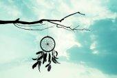 Fényképek a dreamcatcher fán a naplemente