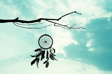 the dreamcatcher on tree at sunset