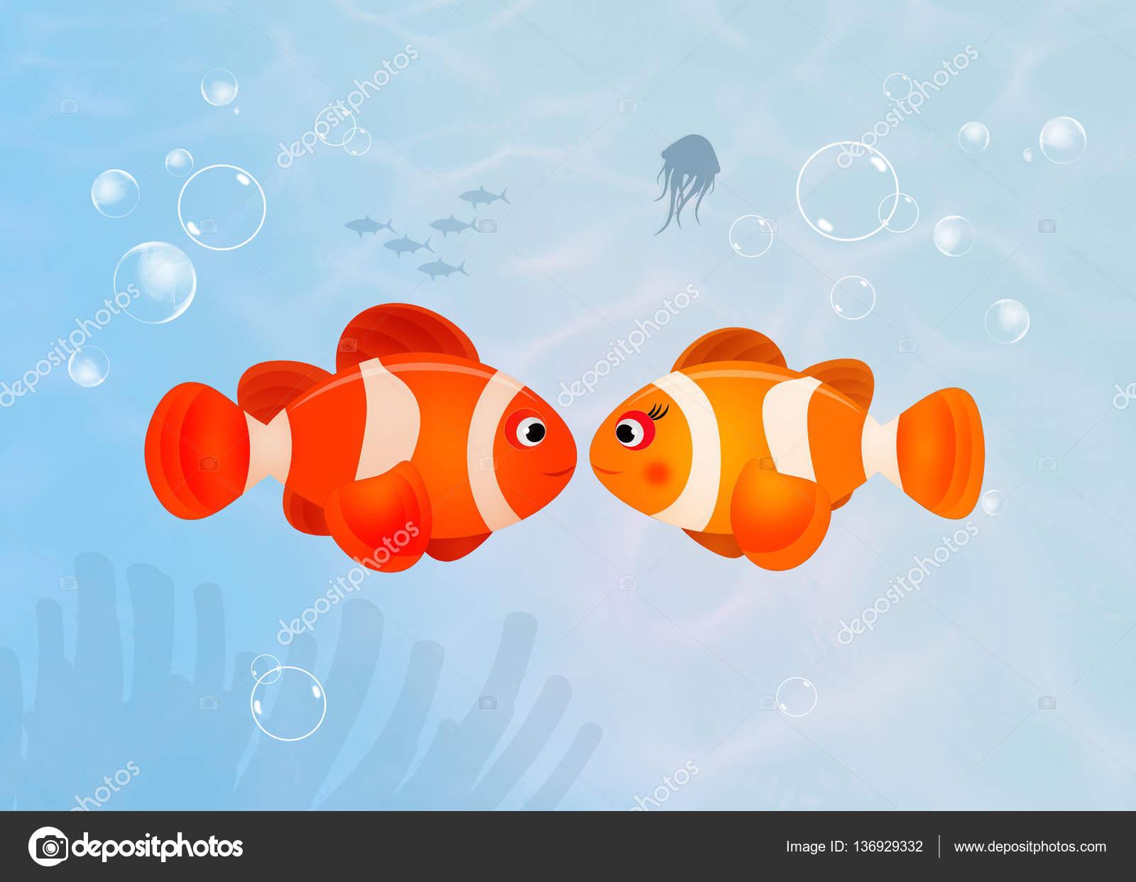 Pesce pagliaccio nell 39 oceano foto stock adrenalina for I love the fishes