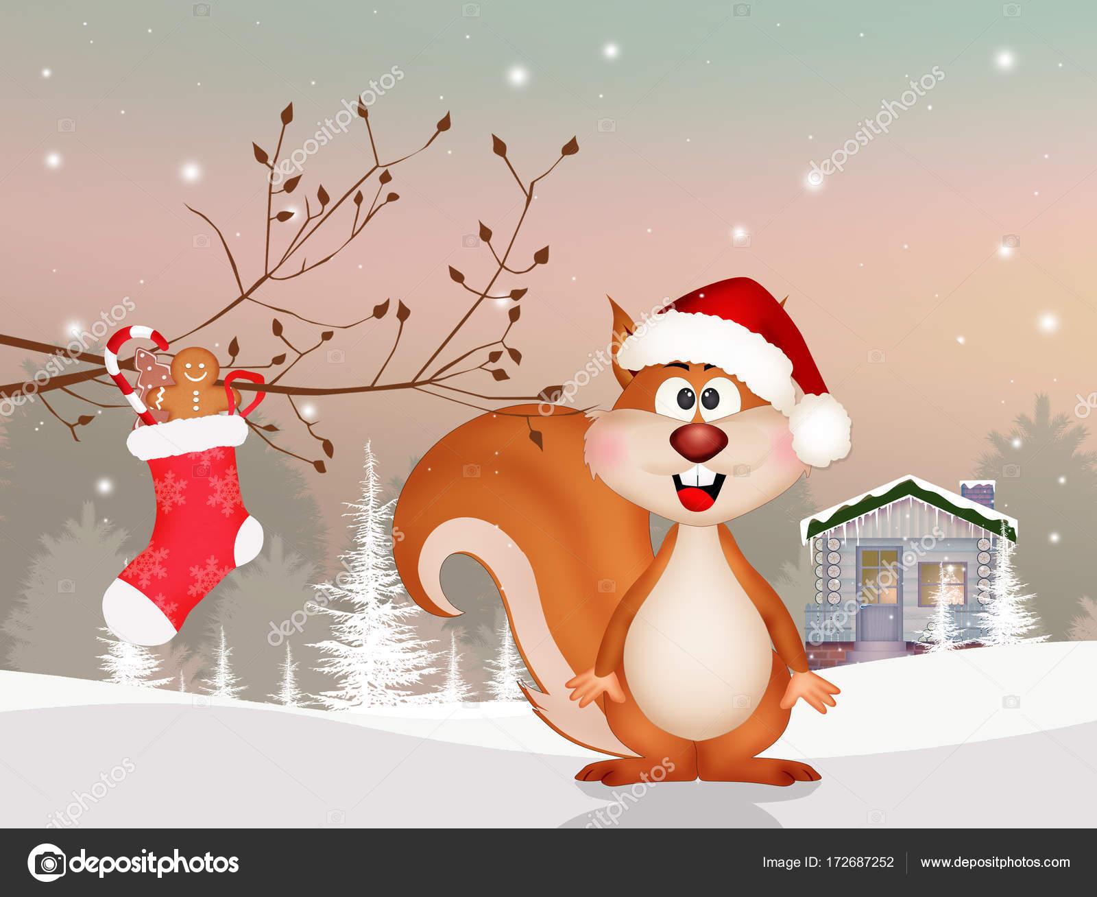 Eichhörnchen zu Weihnachten — Stockfoto © adrenalina #172687252