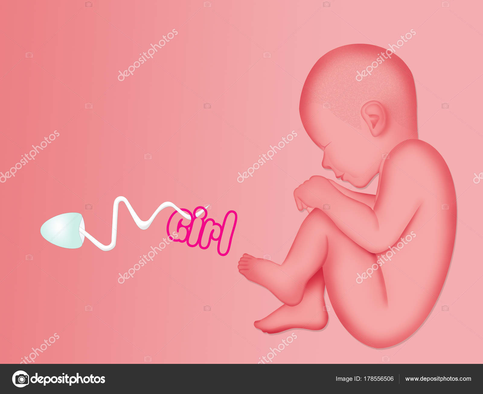 Illustration Announcement Baby Female Stock Photo C Adrenalina - Baby-collection-by-adrenalina