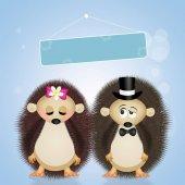 Fotografia illustrazione del matrimonio degli istrici