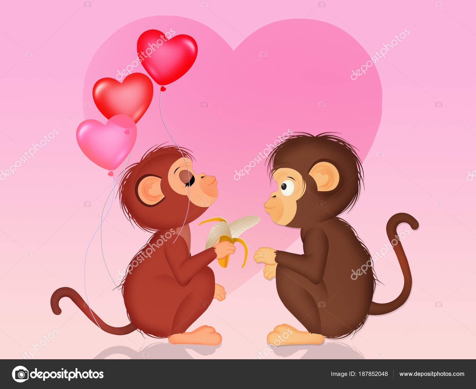 ᐈ Monos Imágenes De Stock Fotos Monos Enamorados