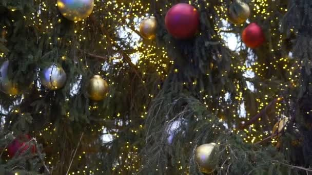 Close up a Christmas tree lights glittering at night. New Year fir tree with decorations and illumination. Xmas tree decorations background.